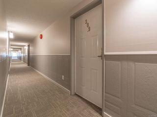 Photo 23: 309 3270 Ross Rd in : Na Uplands Condo for sale (Nanaimo)  : MLS®# 857649