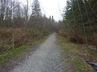 Photo 8: 506 3600 WINDCREST Drive in North Vancouver: Roche Point Condo for sale : MLS®# V871511
