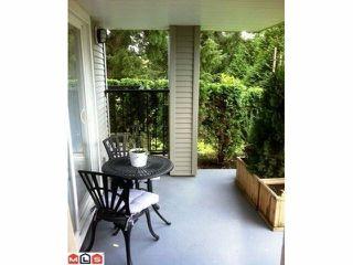 """Photo 12: 102 32638 7TH Avenue in Mission: Mission BC Condo for sale in """"Carolina Villa"""" : MLS®# F1127375"""