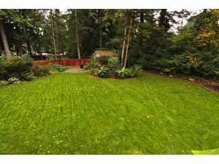 "Photo 19: 4530 197A ST in Langley: Langley City House for sale in ""Hunter Park"" : MLS®# F1323380"