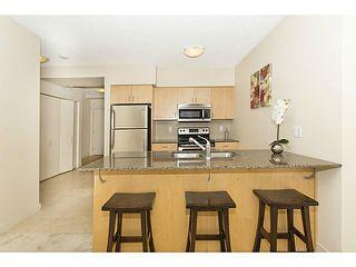 Photo 5: 914 8710 HORTON Road SW in CALGARY: Haysboro Condo for sale (Calgary)  : MLS®# C3614916