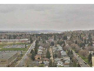 Photo 13: 914 8710 HORTON Road SW in CALGARY: Haysboro Condo for sale (Calgary)  : MLS®# C3614916