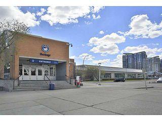 Photo 18: 914 8710 HORTON Road SW in CALGARY: Haysboro Condo for sale (Calgary)  : MLS®# C3614916
