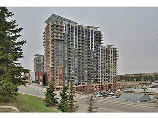 Photo 1: 914 8710 HORTON Road SW in CALGARY: Haysboro Condo for sale (Calgary)  : MLS®# C3614916