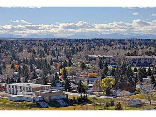 Photo 16: 914 8710 HORTON Road SW in CALGARY: Haysboro Condo for sale (Calgary)  : MLS®# C3614916