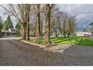 Photo 15: 33906 ANDREWS Place in Abbotsford: Central Abbotsford House for sale : MLS®# F1433165