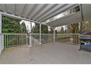 Photo 12: 33906 ANDREWS Place in Abbotsford: Central Abbotsford House for sale : MLS®# F1433165