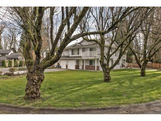 Photo 14: 33906 ANDREWS Place in Abbotsford: Central Abbotsford House for sale : MLS®# F1433165