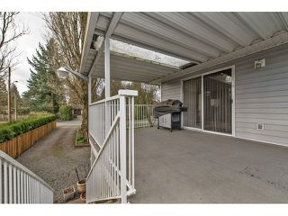 Photo 13: 33906 ANDREWS Place in Abbotsford: Central Abbotsford House for sale : MLS®# F1433165