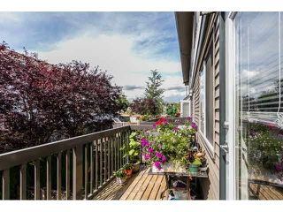 "Photo 18: 79 16233 83 Avenue in Surrey: Fleetwood Tynehead Townhouse for sale in ""Veranda"" : MLS®# F1447509"