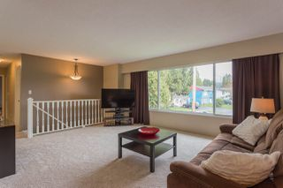 Photo 15: 3765 INVERNESS Street in Port Coquitlam: Lincoln Park PQ House for sale : MLS®# R2048274