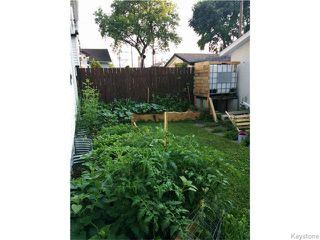 Photo 16: 1115 Spruce Street in Winnipeg: West End / Wolseley Residential for sale (West Winnipeg)  : MLS®# 1606852