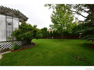 Photo 17: 44 Foxwarren Drive in Winnipeg: Maples / Tyndall Park Residential for sale (North West Winnipeg)  : MLS®# 1615748