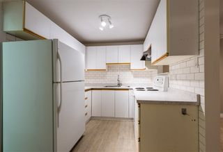 Photo 10: 1328 ZENITH Road in Squamish: Brackendale 1/2 Duplex for sale : MLS®# R2121750