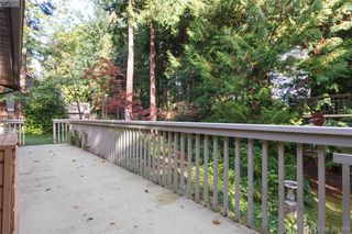 Photo 18: 8679 Forest Park Dr in NORTH SAANICH: NS Dean Park Single Family Detached for sale (North Saanich)  : MLS®# 772597