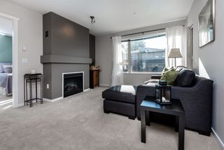 Photo 4: 210 200 KLAHANIE DRIVE in Port Moody: Port Moody Centre Condo for sale : MLS®# R2218605