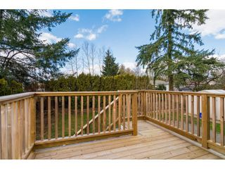 Photo 18: 26657 32A AVENUE in Langley: Aldergrove Langley House for sale : MLS®# R2242997