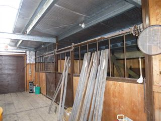 Photo 15: 253045 Twp Rd 472: Rural Wetaskiwin County House for sale : MLS®# E4102696