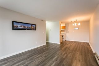 Photo 5: 327 22661 Lougheed Highway in Maple Ridge: East Central Condo for sale : MLS®# R2256005