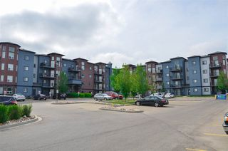 Main Photo: 217 392 silverberry Road NW in Edmonton: Zone 30 Condo for sale : MLS®# E4120988