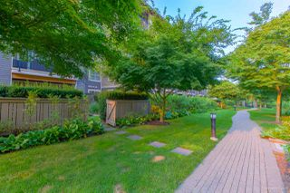Photo 18: 108 5655 210A Street in Langley: Salmon River Condo for sale : MLS®# R2298090