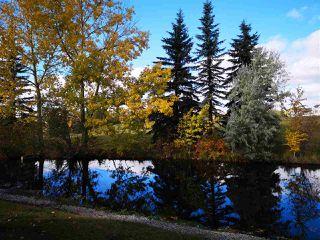 Main Photo: 10656 11 Avenue in Edmonton: Zone 16 House for sale : MLS®# E4145651