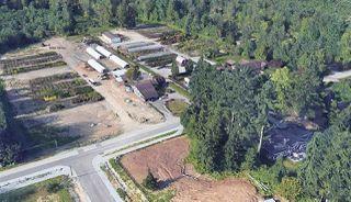 Photo 2: 25292 130 Avenue in Maple Ridge: Websters Corners House for sale : MLS®# R2366561