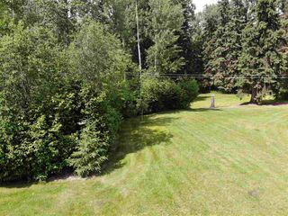 Photo 12: 274043 Twp Rd 480: Rural Wetaskiwin County House for sale : MLS®# E4155743