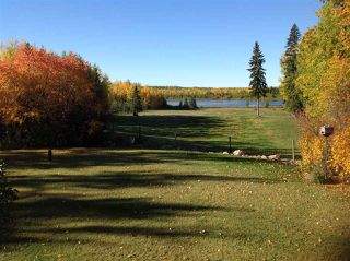 Photo 5: 274043 Twp Rd 480: Rural Wetaskiwin County House for sale : MLS®# E4155743