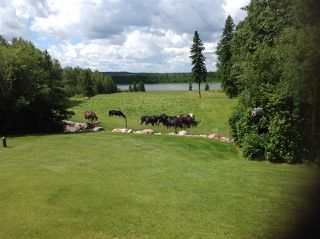 Photo 11: 274043 Twp Rd 480: Rural Wetaskiwin County House for sale : MLS®# E4155743