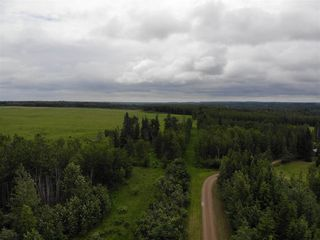 Photo 10: 274043 Twp Rd 480: Rural Wetaskiwin County House for sale : MLS®# E4155743