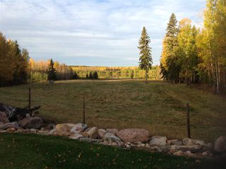 Photo 7: 274043 Twp Rd 480: Rural Wetaskiwin County House for sale : MLS®# E4155743