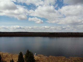 Photo 9: 274043 Twp Rd 480: Rural Wetaskiwin County House for sale : MLS®# E4155743