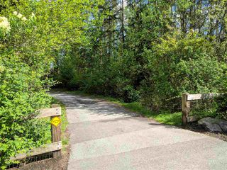 "Photo 18: 22 20966 77A Avenue in Langley: Willoughby Heights Townhouse for sale in ""NATURE'S WALK"" : MLS®# R2370750"