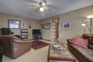 Photo 22: 10451 12 Avenue in Edmonton: Zone 16 House for sale : MLS®# E4163820