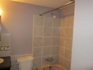 Photo 7: 105 10615 114 Street in Edmonton: Zone 08 Condo for sale : MLS®# E4163918
