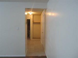 Photo 5: 105 10615 114 Street in Edmonton: Zone 08 Condo for sale : MLS®# E4163918
