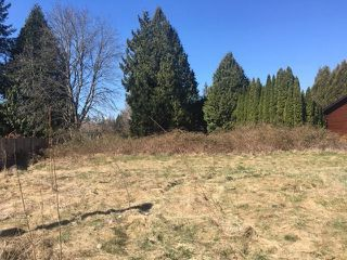 Photo 3: Lot 291 MACKIE Street in Langley: Fort Langley Land for sale : MLS®# R2384925