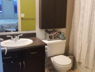 Photo 14: 303 8223 99 Street in Edmonton: Zone 15 Condo for sale : MLS®# E4178029