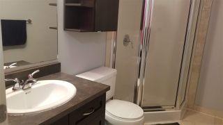 Photo 11: 303 8223 99 Street in Edmonton: Zone 15 Condo for sale : MLS®# E4178029