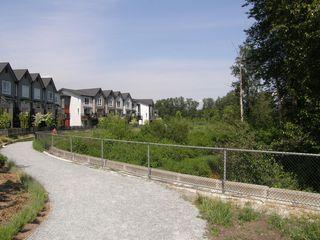 Photo 3: 315 2307 RANGER Lane in FREMONT GREEN SOUTH: Home for sale : MLS®# V1125165