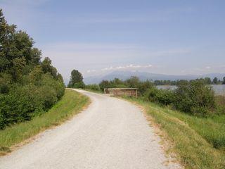 Photo 7: 315 2307 RANGER Lane in FREMONT GREEN SOUTH: Home for sale : MLS®# V1125165