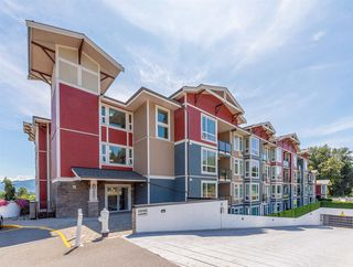 """Photo 1: 301 2242 WHATCOM Road in Abbotsford: Abbotsford East Condo for sale in """"Waterleaf"""" : MLS®# R2477896"""