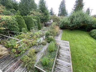 Photo 11: 3576 W 35TH AVENUE in Vancouver: Dunbar House for sale (Vancouver West)  : MLS®# R2502776