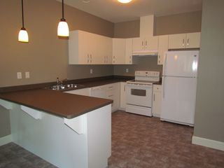 "Photo 1: #3 36189 LOWER SUMAS MTN RD in ABBOTSFORD: Abbotsford East Condo for rent in ""MOUNTAIN FALLS"" (Abbotsford)"