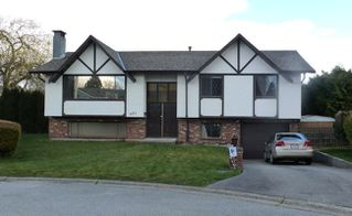 Photo 1: 8484 118A Street in N. Delta: Annieville Home for sale ()  : MLS®# F1208952