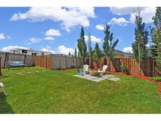 Photo 31: 155 COPPERFIELD Heights SE in Calgary: Copperfield House for sale : MLS®# C4018065
