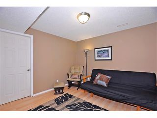 Photo 28: 155 COPPERFIELD Heights SE in Calgary: Copperfield House for sale : MLS®# C4018065