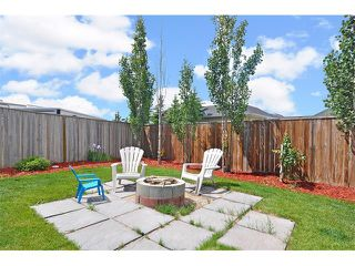Photo 32: 155 COPPERFIELD Heights SE in Calgary: Copperfield House for sale : MLS®# C4018065