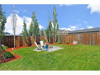 Photo 30: 155 COPPERFIELD Heights SE in Calgary: Copperfield House for sale : MLS®# C4018065